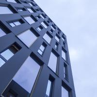 A new regulation introduced in Queensland further develops the statutory approach to combating combustible cladding risks